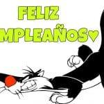 Feliz cumpleaños de Silvestre